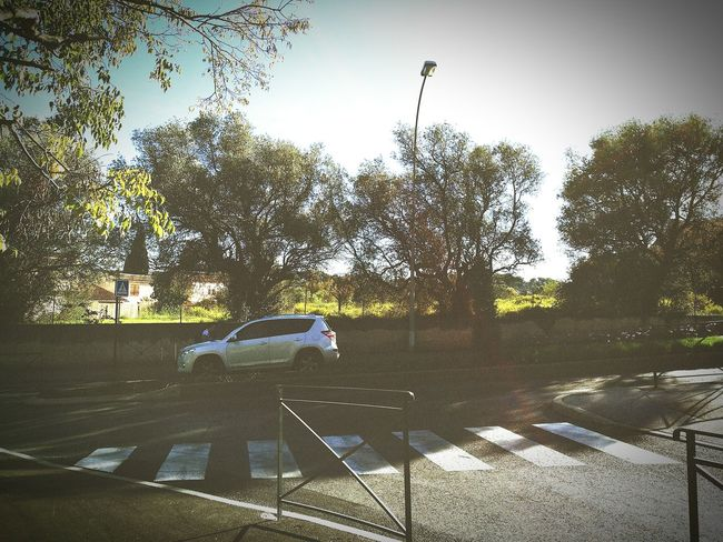 Shadow Road Car Blue Day