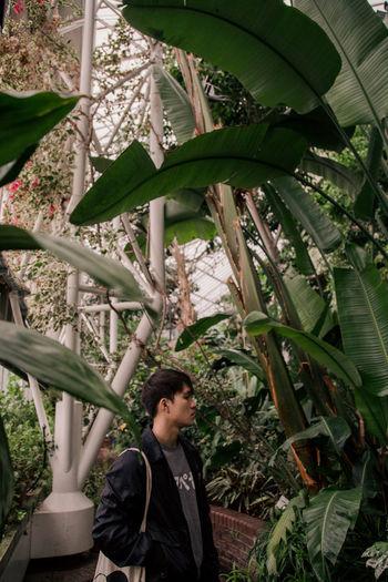 Kelvin London Barbican Conservatory Portrait Portrait Photography portrait of a friend Banana Tree Botanic Garden Botanical Gardens Looking Away Side Profile Tree Thoughtful Friend Thinking Pensive