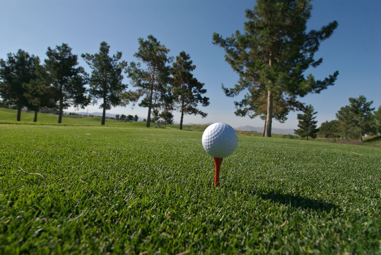Golf ball on field against trees
