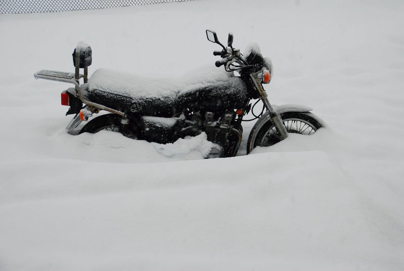 New Jersey New Jeans South Jersey Winter Wintertime Burried Burried In Snow Cold Temperature Covered With Snow Day Land Vehicle Mode Of Transport Motorcycle Nature No People Outdoors Sky Snow Snow Storm Transportation Vehicle Vehicle Seat Weather Winter Winter Wonderland