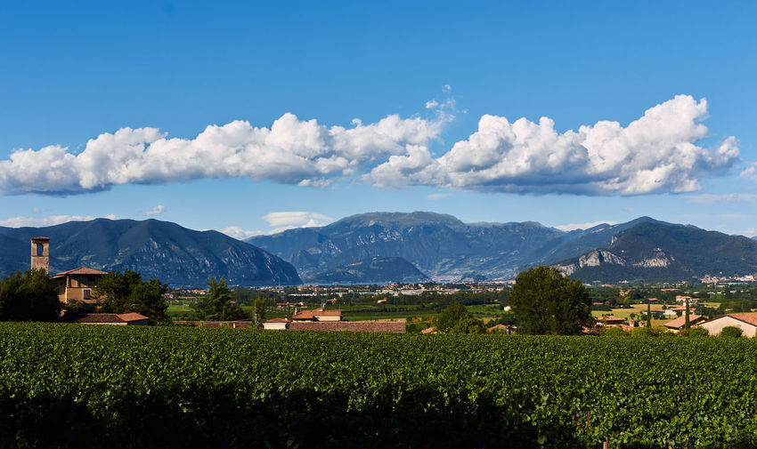 #Holidays #Lake #brescia #franciacorta #green #iseolake #italy #landscape #sunset #sun #clouds #skylovers #sky #nature #beautifulinnature #naturalbeauty #photography #landscape #tourism #winery Agriculture Cloud - Sky Day Field Mountain Mountain Range Nature No People Outdoors Rural Scene Sky Tranquility