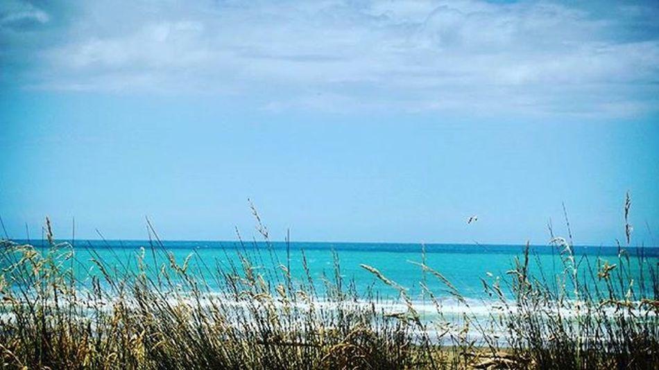 Pourere Pourerebeach Beach Hawkesbay NZ Nzsummer Sunnydays Blueskies Summer Newzealand Aotearoa Scenic Pocket_beaches 9vaga_colorblue9