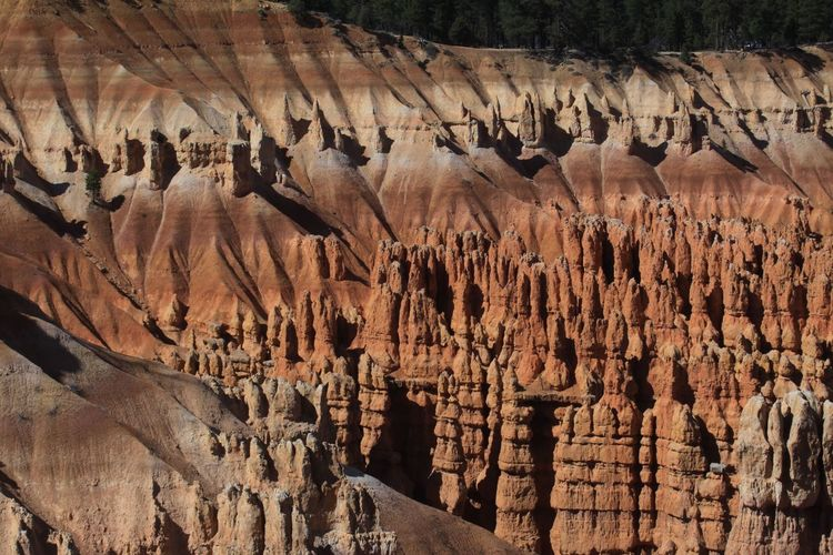Beauty In Nature Bryce Canyon National Park Cave Day Geology Nature No People Outdoors Physical Geography Rock - Object Rock Formation Rock Hoodoo Stalactite  Textured