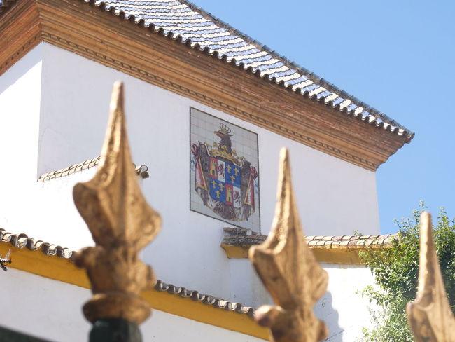 Details Detailphotography Detalles Details Architecture_collection Architecture Seville,spain