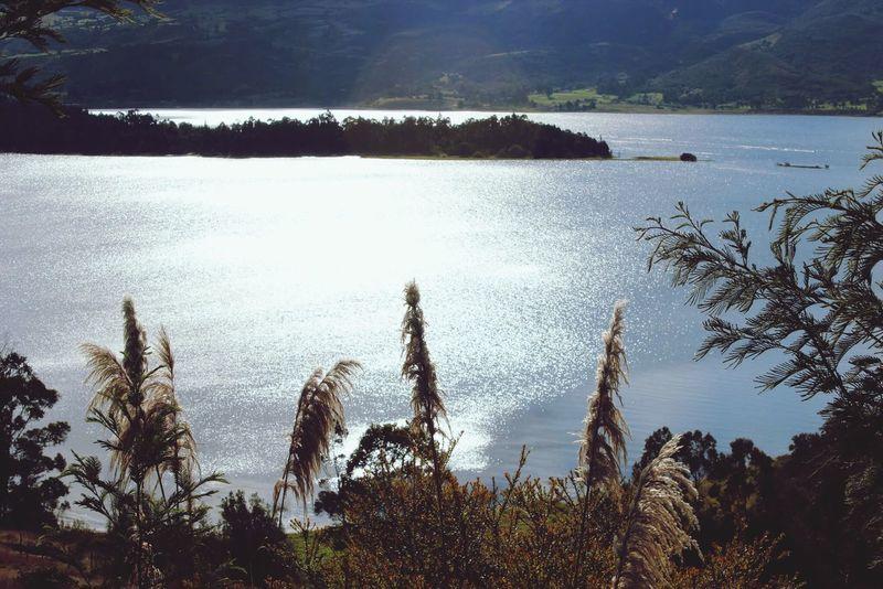 Atardecer en laguna de colombia . Laguna, Atardecer