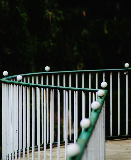 Close-up of railing in park