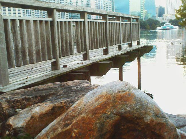 Creative Light And Shadow Orlando, FL Lake Eola Lake Urban Urban Lifestyle Urban Nature Urban Escape Urban Life Urban Photography