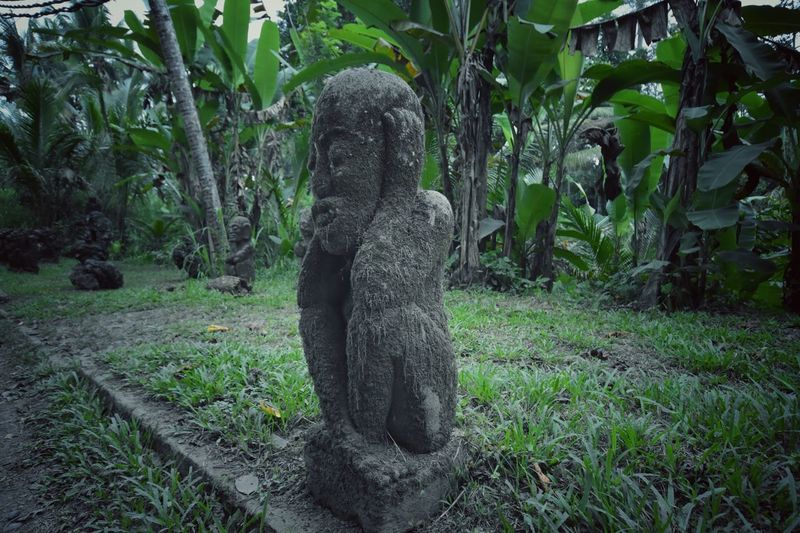 Bali roadside statue Plant One Person Land Tree Growth Nature Day