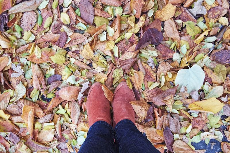 Low section of woman standing on fallen leaves