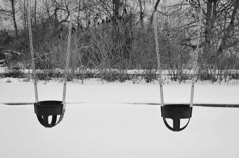 Waiting for the spring. Tree Snow Cold Temperature Winter Bare Tree Frozen Rope Swing Swing Chain Swing Ride Playground Slide - Play Equipment