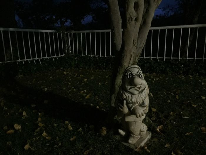 Statue against trees at night