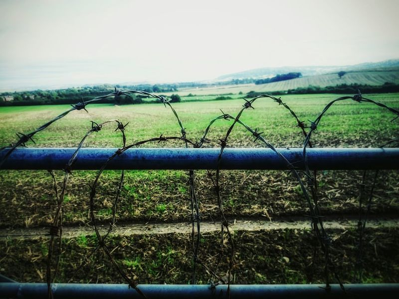 Open space already closed Rural Scene Agriculture Landscape Outdoors Fence No Entry Backgrounds No Escape Nature First Eyeem Photo Field Green Color Day Farmland Close-up No People Outdoor Horison Ice Age Non-urban Scene Freedom Trapped Prison