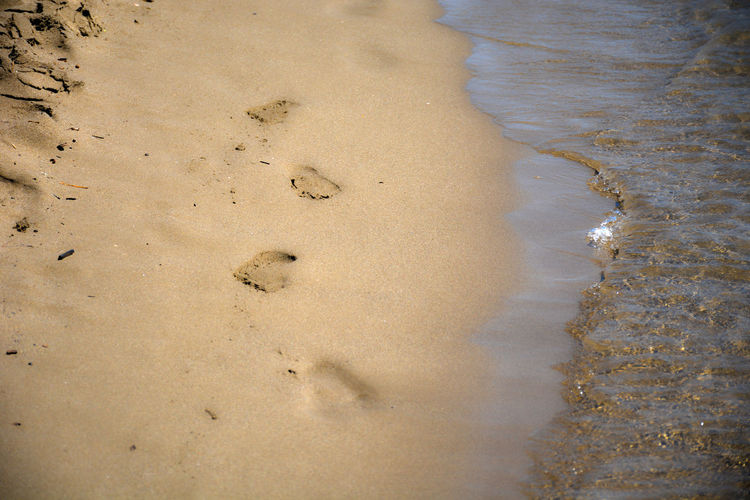 High angle view of footprints on beach