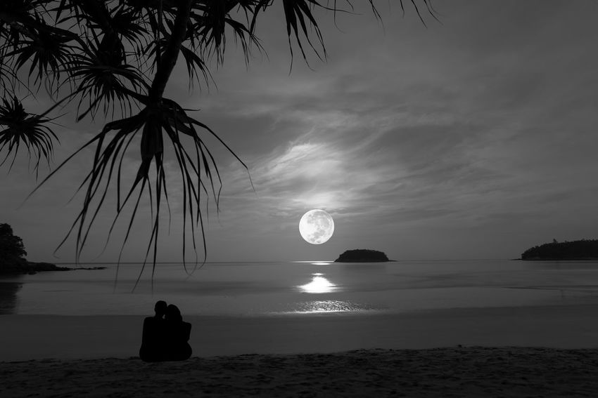 Couple embracing on the beach enjoying amazing fullmoonset Astronomy Beach Beauty In Nature Cloud - Sky Day Horizon Over Water Monochrome Nature One Person Outdoors Palm Tree People Real People Romance Scenics Sea Sky Tranquil Scene Tranquility Two Persons Water