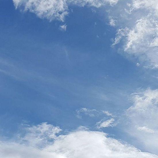 صباح الخير... صباح صباح_الورد صباحكم تصويري  ت فوتو سماء ازرق