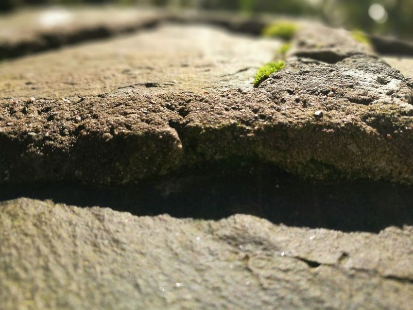 Rock of ages Sunlight Close-up Phonetography EyeEm Gallery Phone Camera Huaweiphotography Huawei P9 Leica Leica Lens P9 Huawei Rock Rock Formation Geology Outdoors Eyem Best Shots Stone