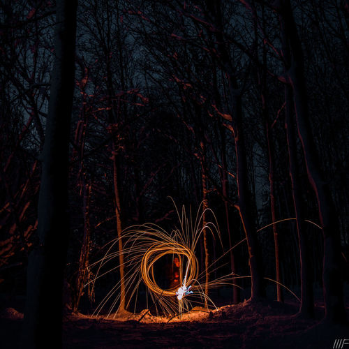 Tree Night Long Exposure Land Illuminated Trunk Plant Tree Trunk Nature Motion Burning Glowing Fire Forest Real People One Person Blurred Motion Fire - Natural Phenomenon Outdoors Wire Wool Dark Sparks Light