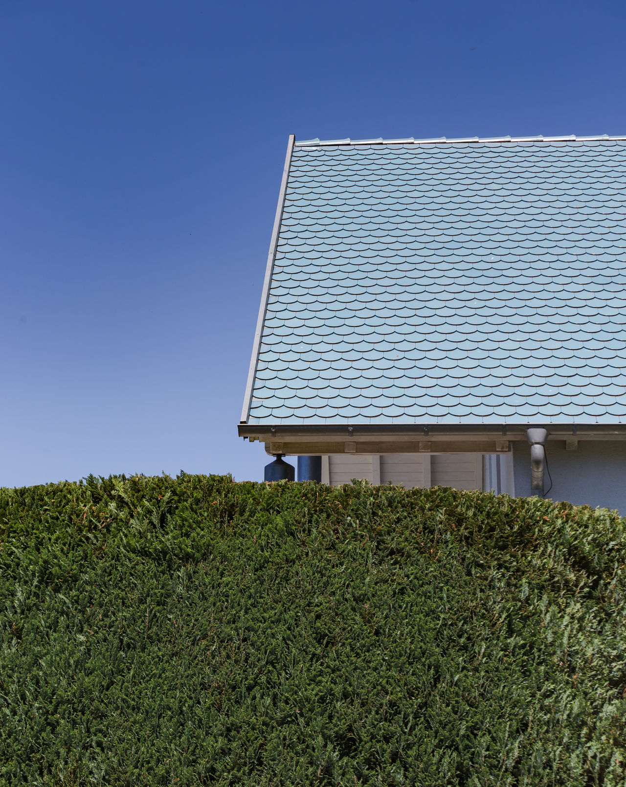 Hedge by house against clear sky