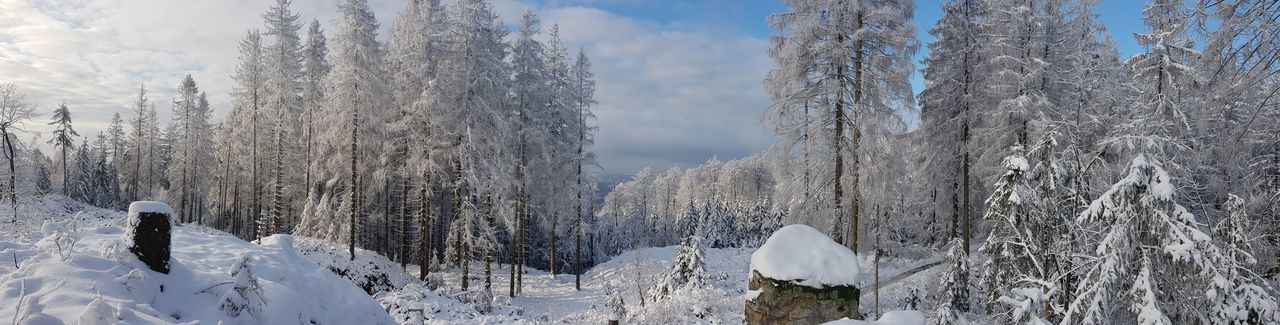 Panoramic view of snow covered land and trees against sky