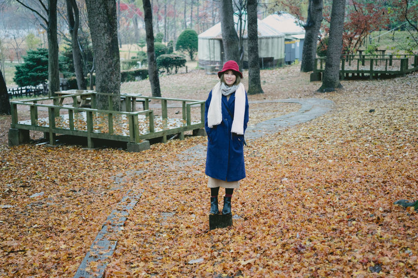 Fashion Fashion&love&beauty Holiday Korea Maple Maple Leaf Portrait Snap Stlying Streetphotography Trip Vocation