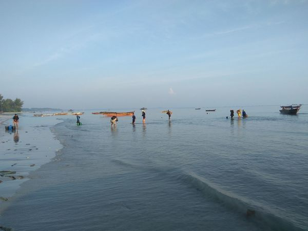 Beach Water Sea Outdoors Large Group Of People Sky Horizon Over Water Nature Fisherman Sand Fishing Net Beauty In Nature Day Scenics People Adult Adults Only Only Men Beach Life Full Length Beach View Sea Life Leisure Activity Tradisional Fish Chatcher Large Group Of Objects