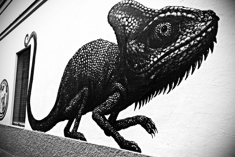 Malaga Graffitiart GraffitiTour Sohobarriodelasartes #callecasasdecampos