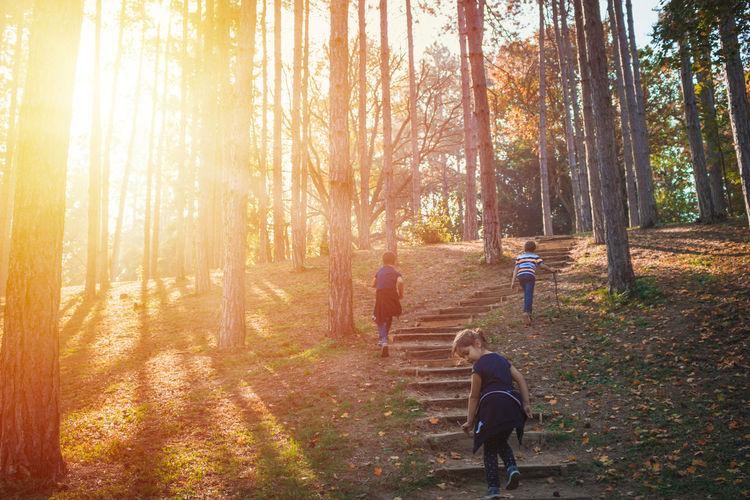 Rear view of siblings walking in park