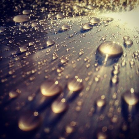 Water Droplets Water Drops Water_collection 虫メセン