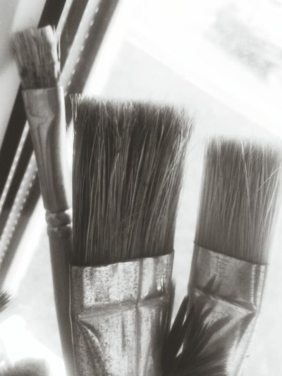 Brushes Rainy Day B&w Black&white