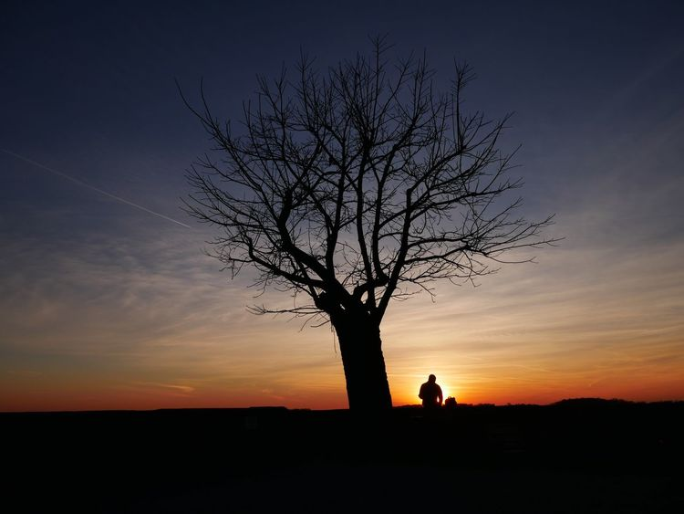 Are you with me? Silhouette Sunset One Person Bare Tree Standing Nature Sky Outdoors Tree One Man Only Beauty In Nature People First Eyeem Photo EyeEmNewHere