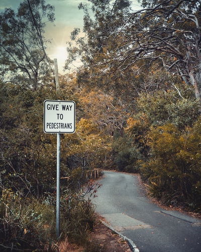 Road sign by trees