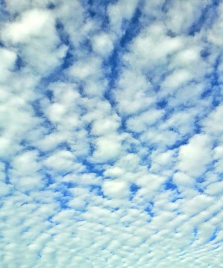 Blue Cloud - Sky Sky Backgrounds Full Frame Nature No People Pattern Softness Abstract Beauty In Nature Low Angle View Sky Only Textured  Outdoors Day Flying Close-up