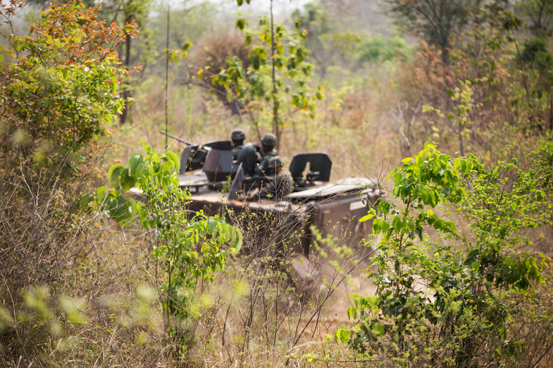 March 24, 2018, Amphoe Lom Sak, Thaialand; Thai military participated in a special combat operation. Day Grass Growth Nature No People Outdoors Plant Tree
