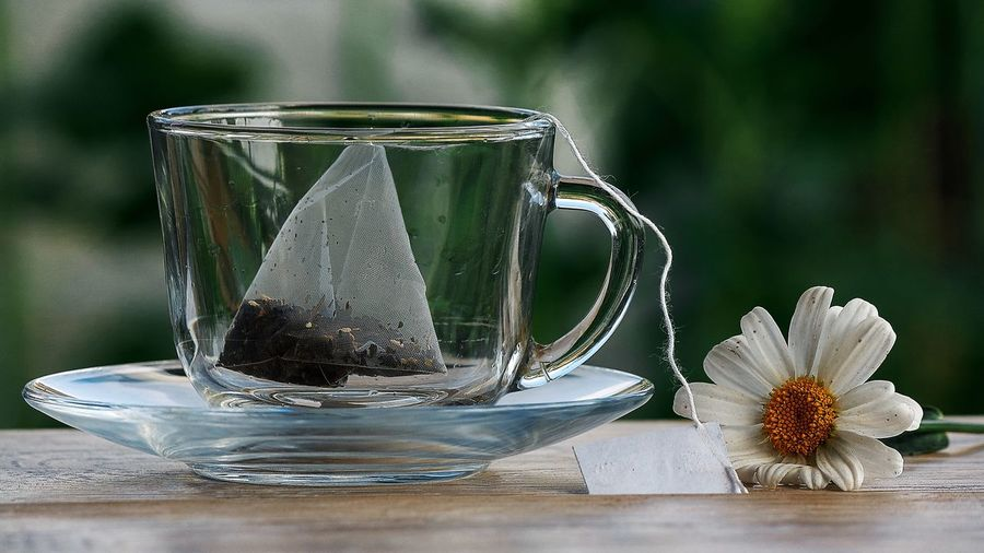 Teabag in an empty cup