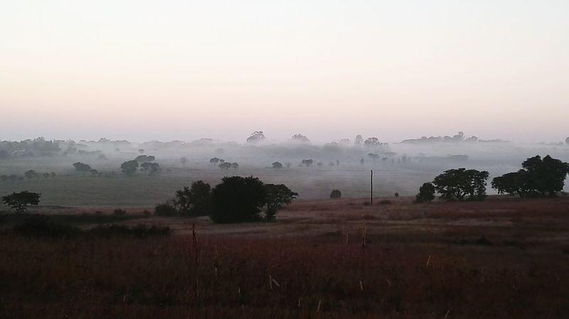 Misty Morning Misty Landscape Mist Sunrise_Collection Sunrise Over Farmland