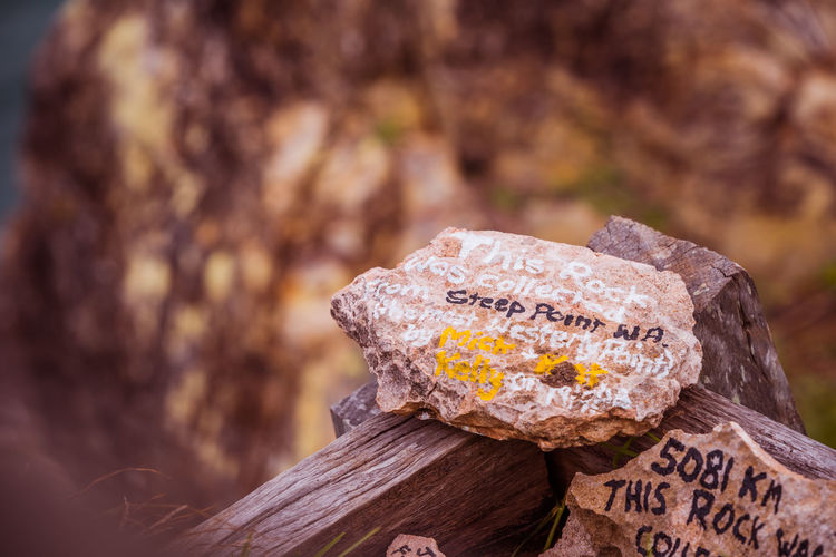 Text Focus On Foreground Communication Wood - Material Close-up No People Western Script Nature Day Tree Outdoors Food Wood Selective Focus Textured  Still Life Plant Food And Drink Tree Stump Love Bark