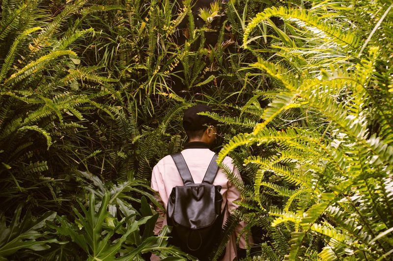 The jungle boy - Tropical Jungle Green Mystery Escape Mood EyeEm Best Shots Eye4photography  Lost Exotic Forrest