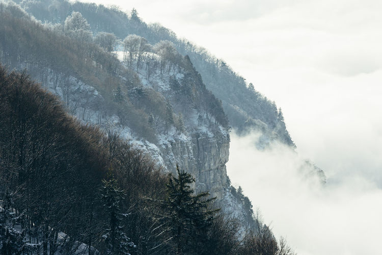Wide angle aeria view of the canton of Geneva on a foggy winter day. Tree Beauty In Nature Cliff Cold Temperature Day Fog Foggy Foggy Morning Forest Forest Photography Mist Mountain Nature Outdoors Power In Nature Scenics Sky Snow Tranquil Scene Tranquility Tree Water Winter