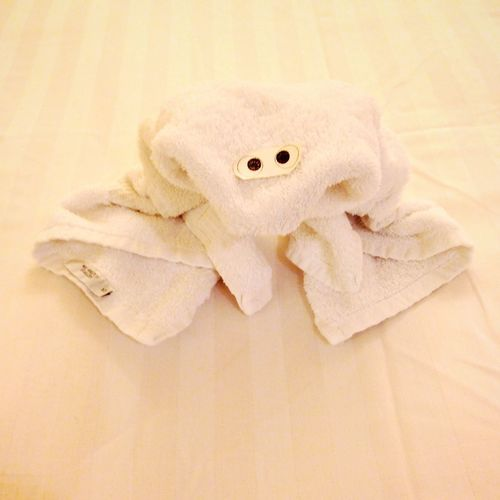 Cruise 2013 Koduckgirl Towel Animal