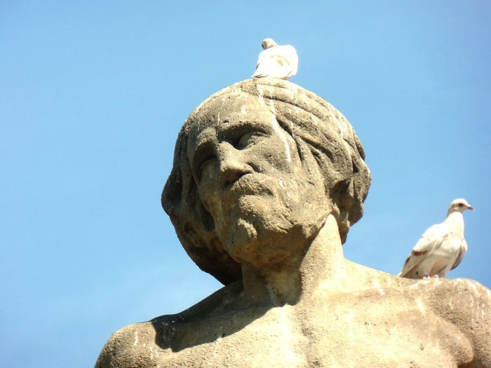 Low angle view of doves perching on sculpture against clear blue sky