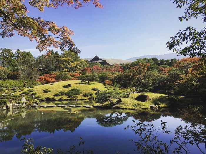 依水園 東大寺 Nara,Japan Travel Destinations Japan Photography Water Plant Sky Tree Nature Lake Beauty In Nature Reflection Clear Sky Tranquility Scenics - Nature Growth Floating On Water Plant Part Tranquil Scene