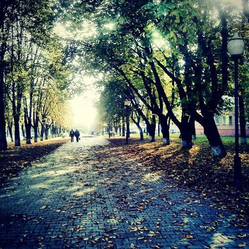 Autumn Walking Around Streetphotography Outdoor Walkingstreet Park