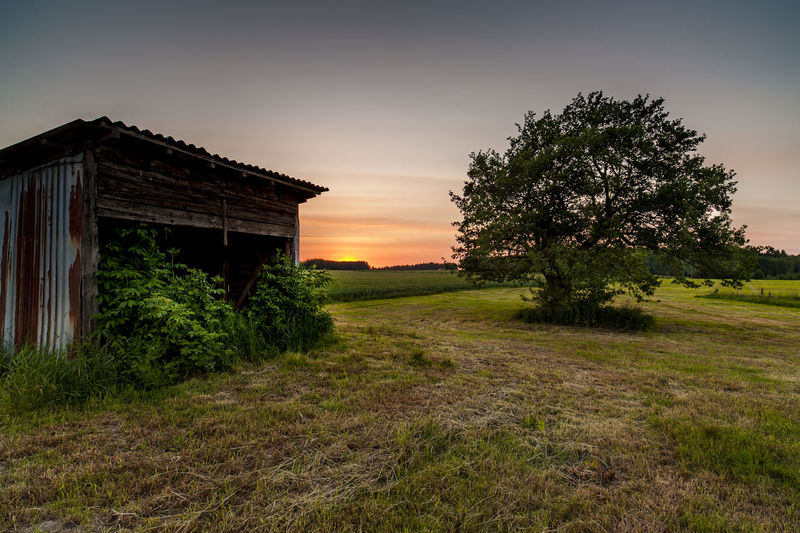 Agriculture Farm Tree Beauty In Nature Desolate Scene Germany Sauerland Grass Landscape Old Barn Rusty Shed Sunset, First Eyeem Photo