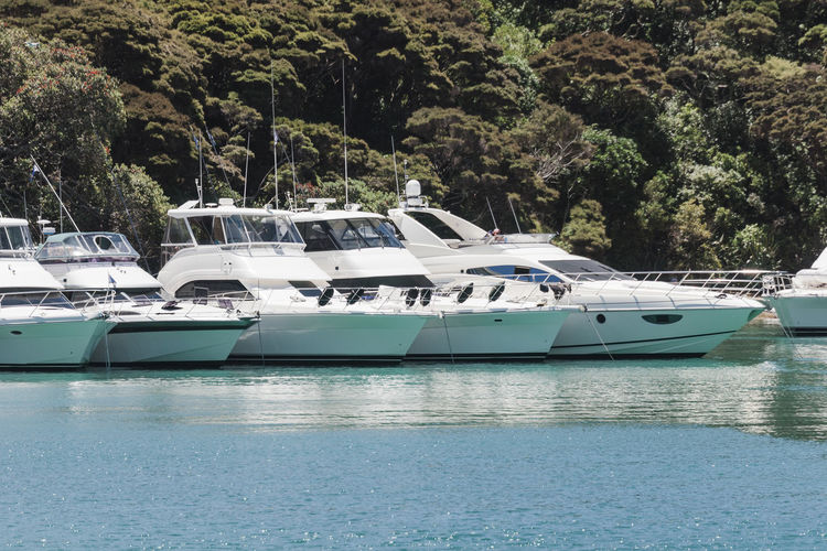 Motor yachts in Bay of Islands, New Zealand Bay Of Islands Coastline In A Row New Zealand Beauty New Zealand Scenery WoodLand Boat Forest Island Lifestyles Luxury Moored Motor Yacht Motorboat Motoryacht New Zealand North Island Sea Side By Side Water Wealth White Woods Yacht Yachting