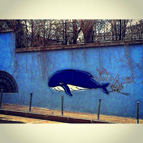 Грустный кит