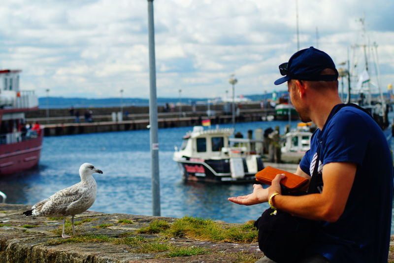 #saßnitz Animals In The Wild Bird Boat Möwe Sassnitz Sassnitzhafen Water