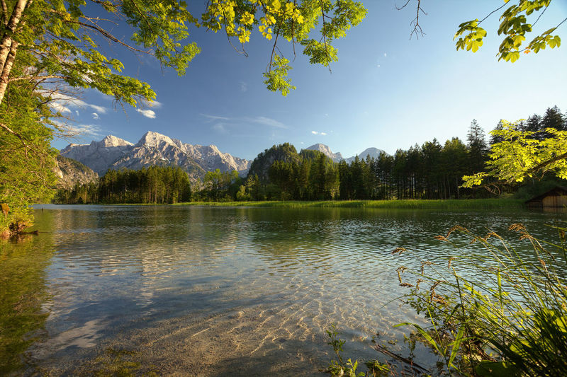 Austria Clear Sky Green Grünau Nature Photography Almsee Beauty In Nature Clear Water Forest Idyllic Lake Mountain Nature No People Non-urban Scene Outdoors Plant Scenics - Nature Sky Tree Wasser Water