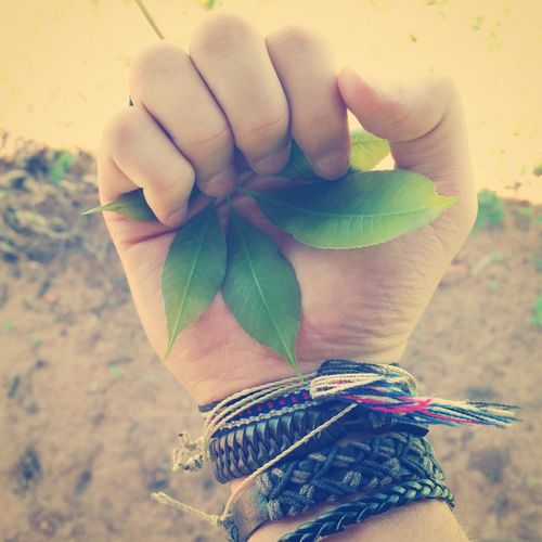 Nature Naturelovers Places Trees Trees are the destiny of humanity :3