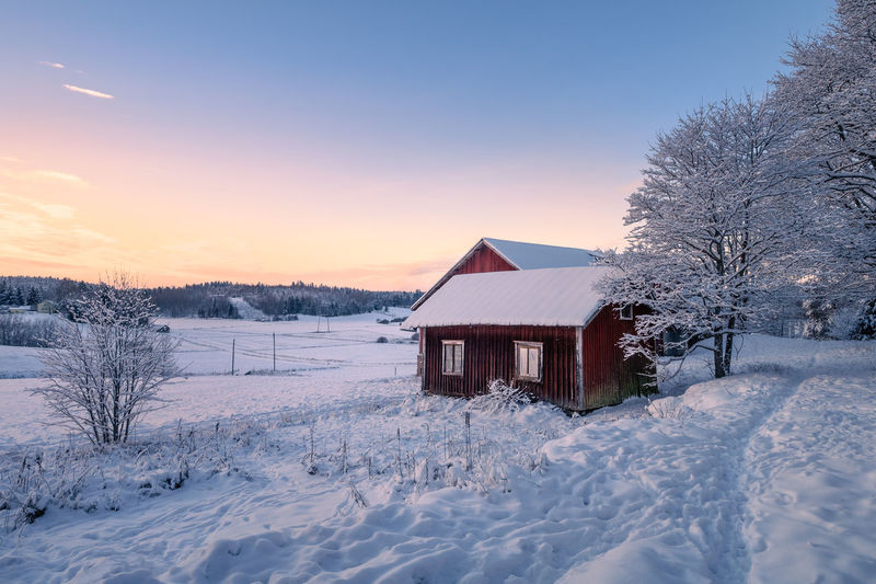 Abandoned house with snowy landscape and sunset at winter evening in Finland Snow Cold Temperature Winter Built Structure Tree Building Exterior Sunset Nature Scenics - Nature Building Tranquil Scene No People Outdoors House Beauty In Nature Sky Landscape Dawn Winter Abandoned Countryside Colorful Scenics Tranquility Idyllic