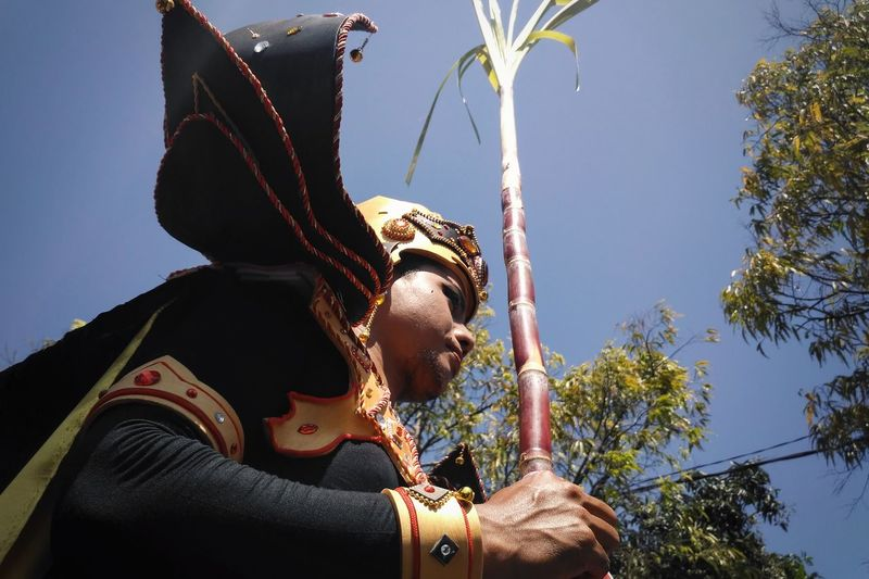 Low Angle View Of Man In Costume Against Clear Sky